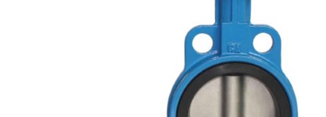 Затвор поворотный дисковый